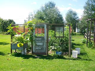 2nd year garden 003