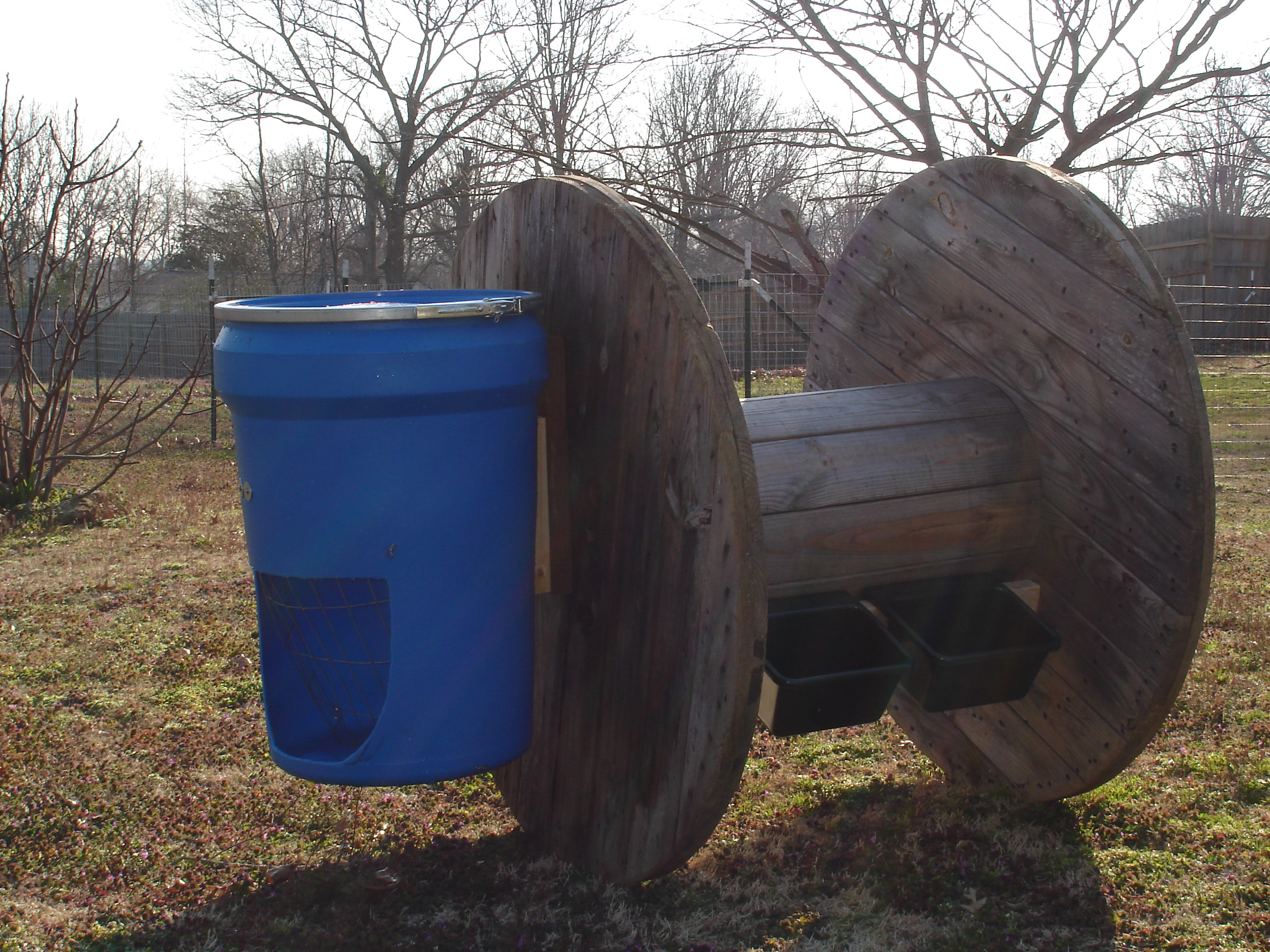 Keep Your Goats Entertained and Healthy | Lone Star Farmstead