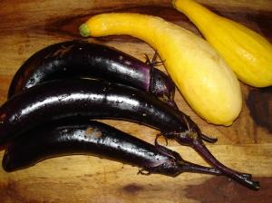 eggplant squash 1